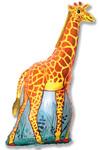 """""""Жираф""""(2) - Шардеко"""