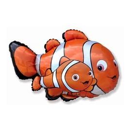 """""""Немо"""" (рыба-клоун) - купить в Москве с доставкой  - Шардеко"""