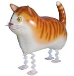 """""""Кот"""" - Шардеко"""