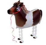 """Лошадь"" - Шардеко"