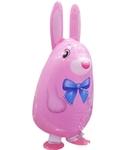 """Розовый заяц"" - Шардеко"